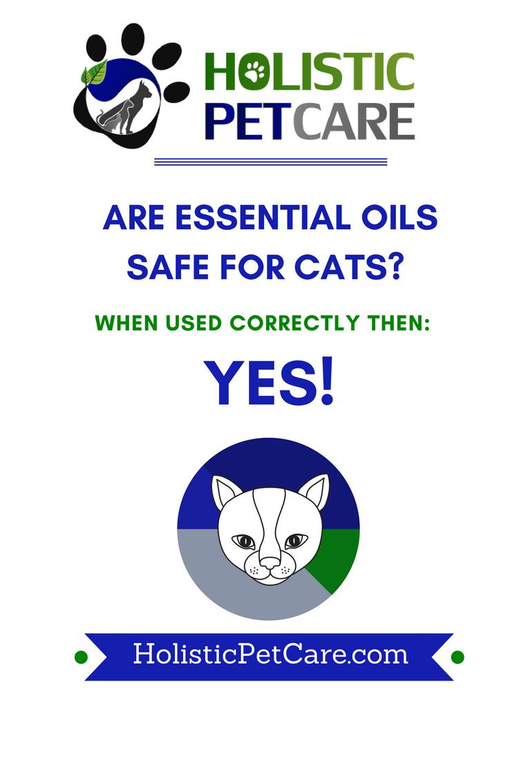 essentialoilscats.png